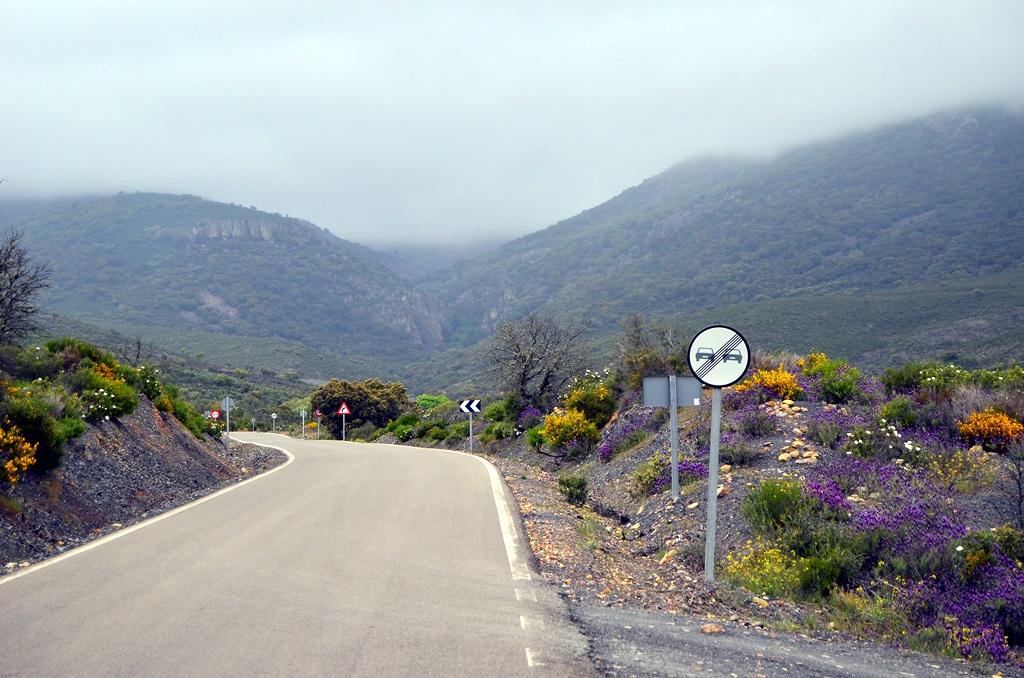 Naturaleza Rutas guiadas por carretera